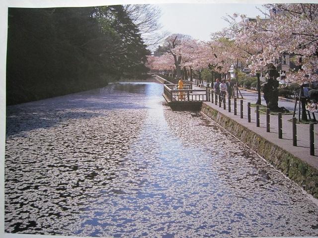 20180129-005-IMG_0963金沢.jpg