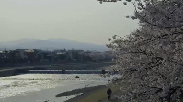 20180127-001-金沢犀川.jpg