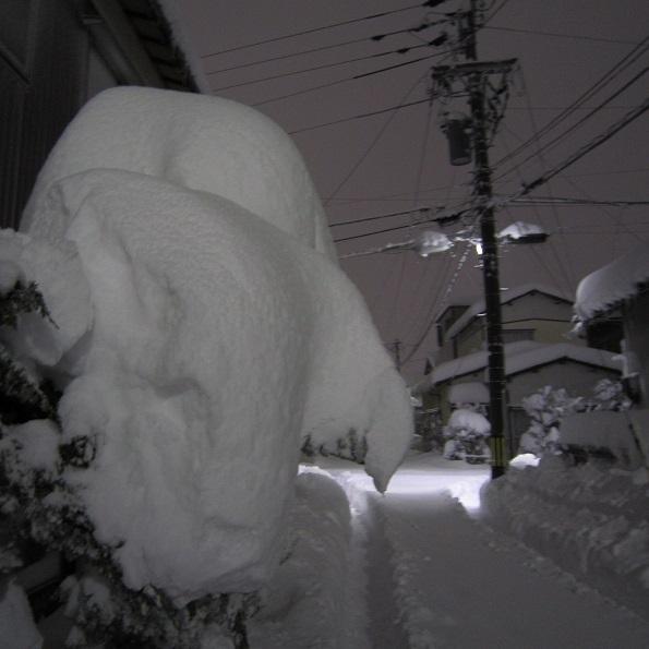 20180213-TOP-IMG_7136(IXY-10S)記録的大雪.jpg